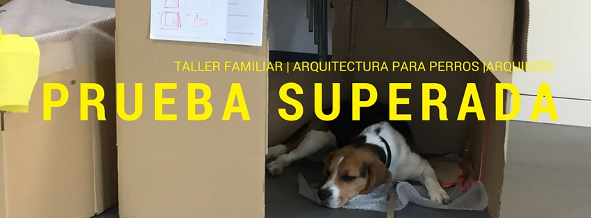 Copy of TALLER FAMILIAR _ ARQUITECTURA PARA PERROS _ARQUIKIDS